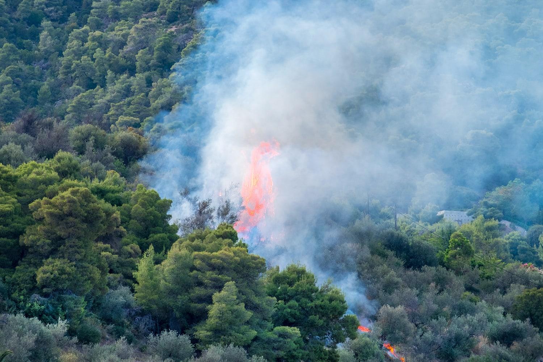 Un incendio in Grecia