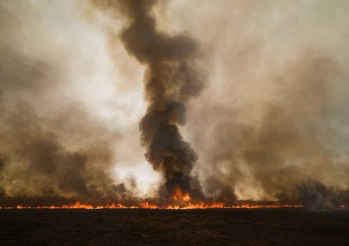 Gli incendi in Siberia del 2019