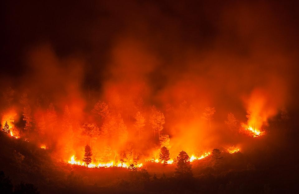Gli incendi dell'Indonesia nel 2019